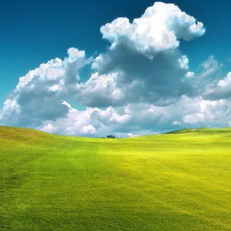 3d landscape design software free for ipad for Sunny landscape designs
